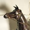 Magnifique sculpture de cheval en cuir.