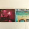 Deux CD de Francis Cabrel