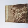 Revue Du Touring Club De France 1945 numéro 553