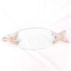 Plat de service en verre et métal forme poisson
