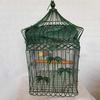 Ancienne cage à oiseaux verte