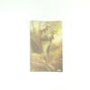 Carte postale d'un