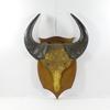 Ancien trophée de chasse massacre de buffle déco cabinet de curiosités