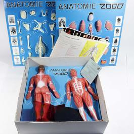 Jeu Anatomie 2000 - Photo 1