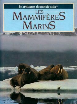 Les mammifères marins - Photo 0