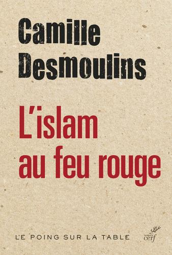 L'islam au feu rouge - Photo 0