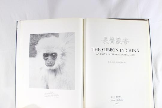 The Gibbon in China.RARE - Photo 1