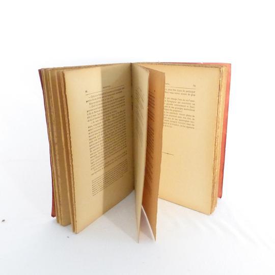 Livre Ancien Les Fastes De L Eglise Redemption 1914